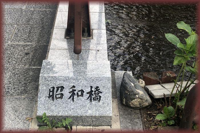 f:id:nakkacho902:20200705223314j:plain