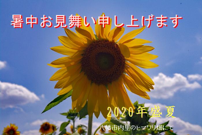 f:id:nakkacho902:20200801210310p:plain