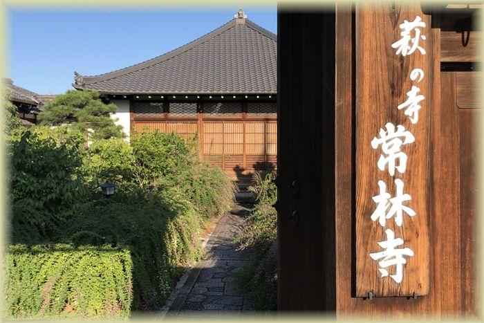 f:id:nakkacho902:20200921211816j:plain