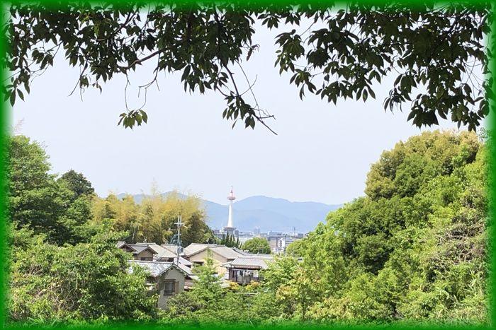 f:id:nakkacho902:20210510221017j:plain