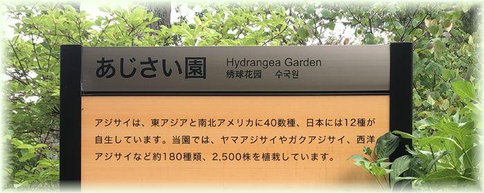 f:id:nakkacho902:20210607144950j:plain