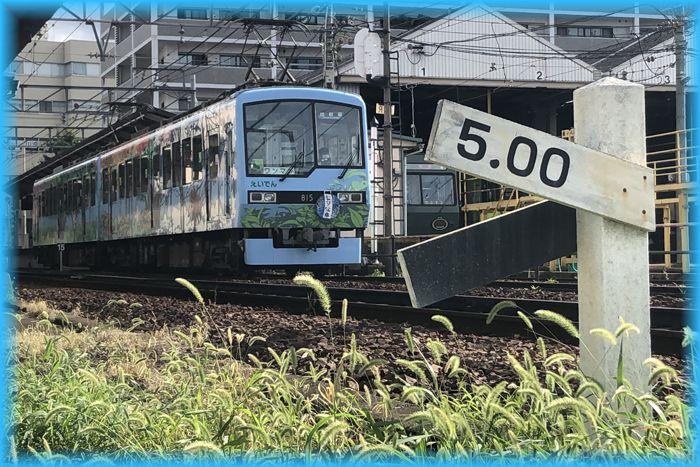 f:id:nakkacho902:20210807092631j:plain