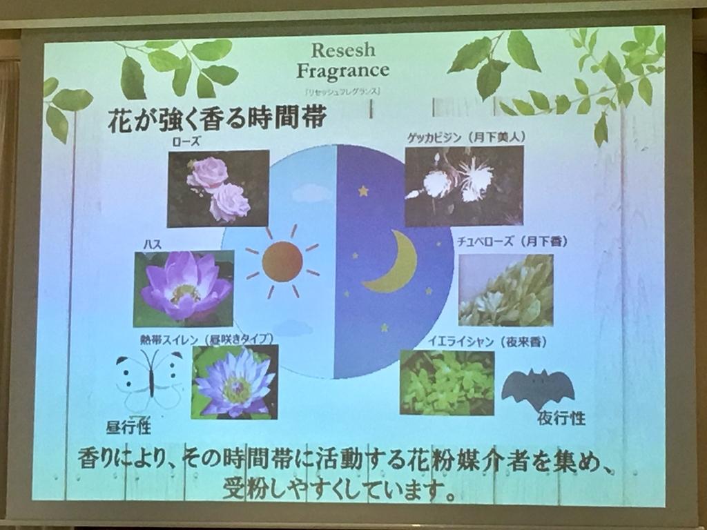 f:id:nakobu:20190222171136j:plain