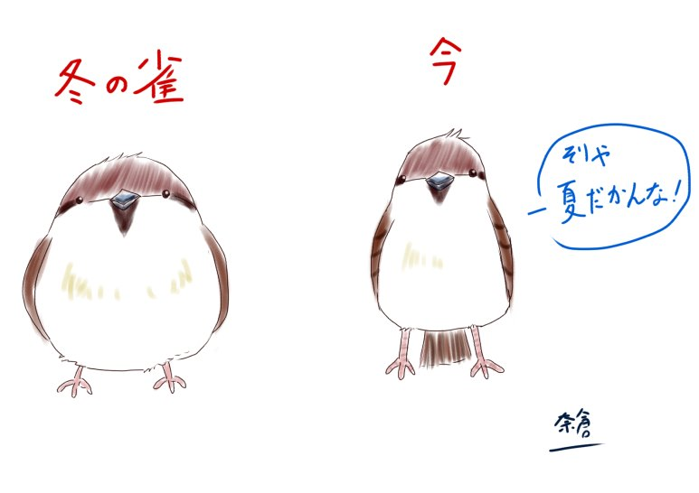 f:id:nakuramayumicom:20170621121032j:plain