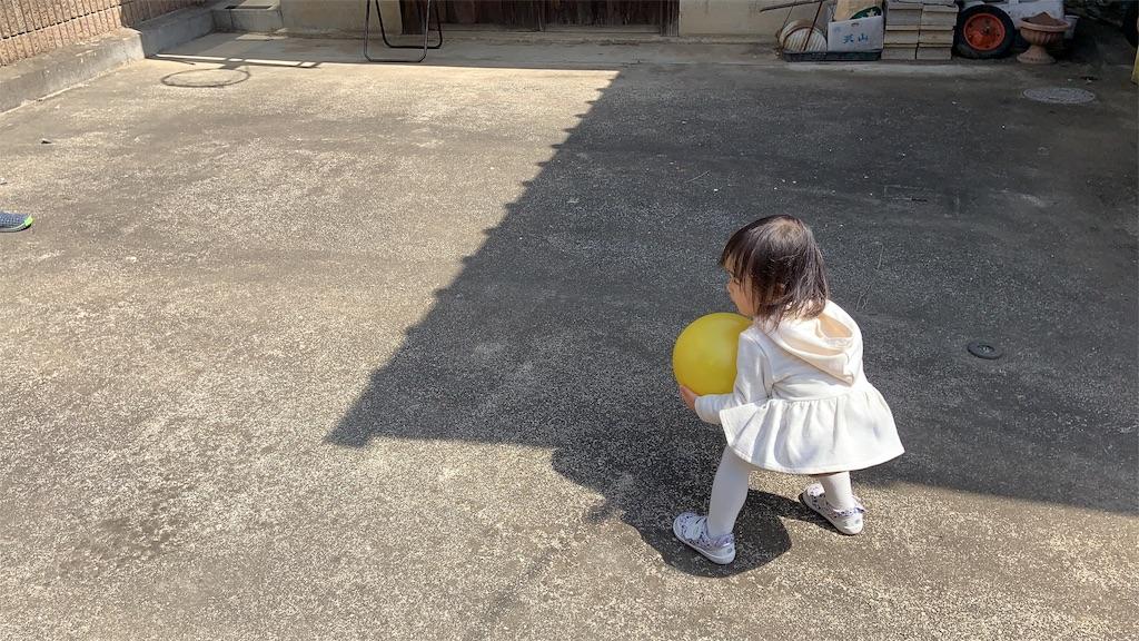 f:id:namahideki:20190405214441j:image