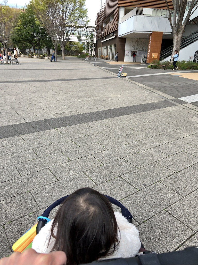 f:id:namahideki:20190413071457j:image