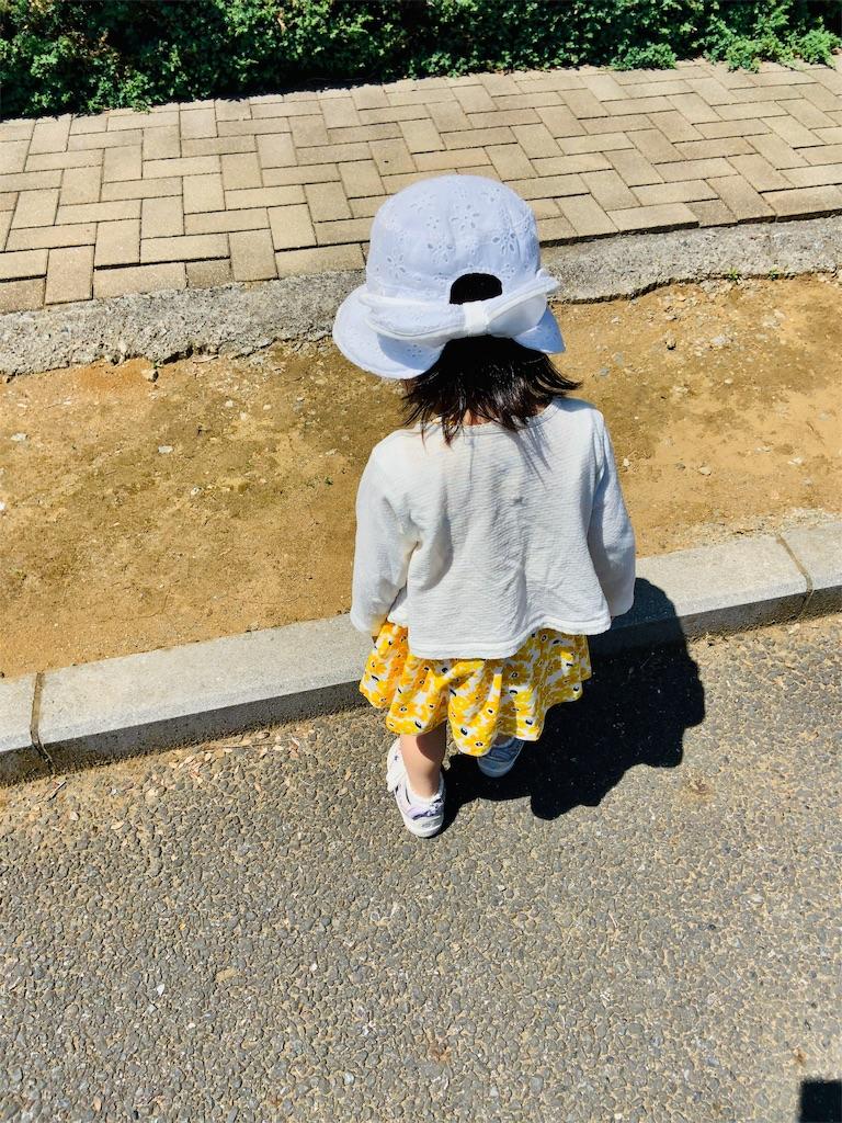 f:id:namahideki:20190526065320j:image