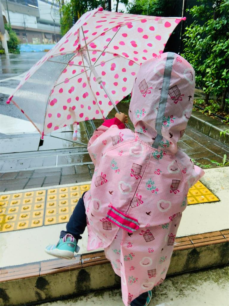 f:id:namahideki:20190611213328j:image