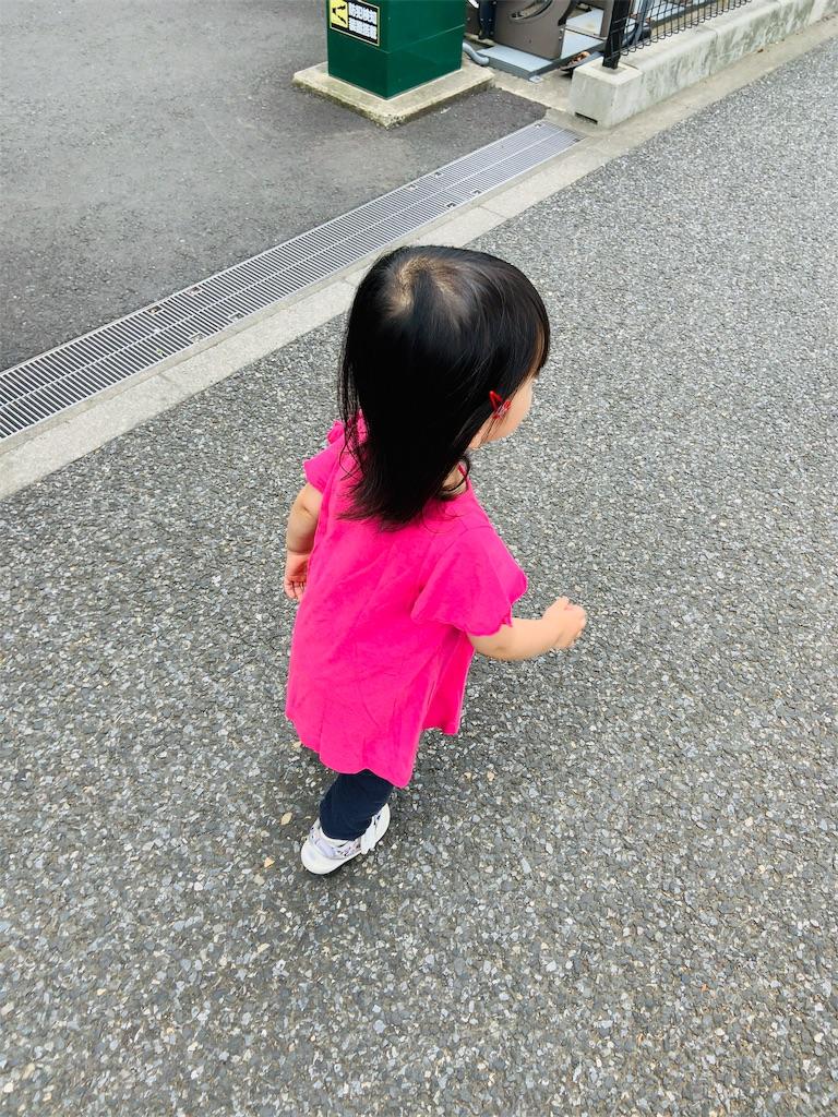 f:id:namahideki:20190623203547j:image