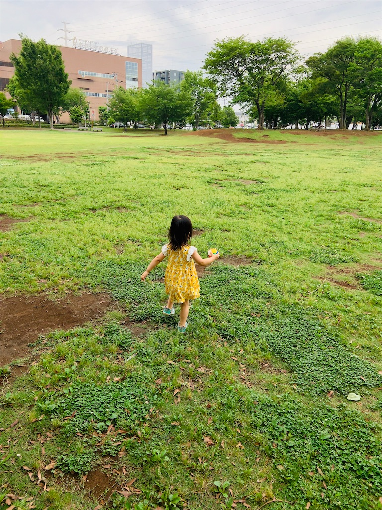 f:id:namahideki:20190629161211j:image