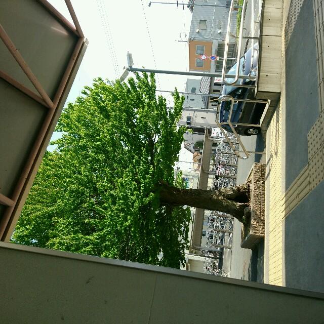 f:id:namakemono1250:20170430221610j:image