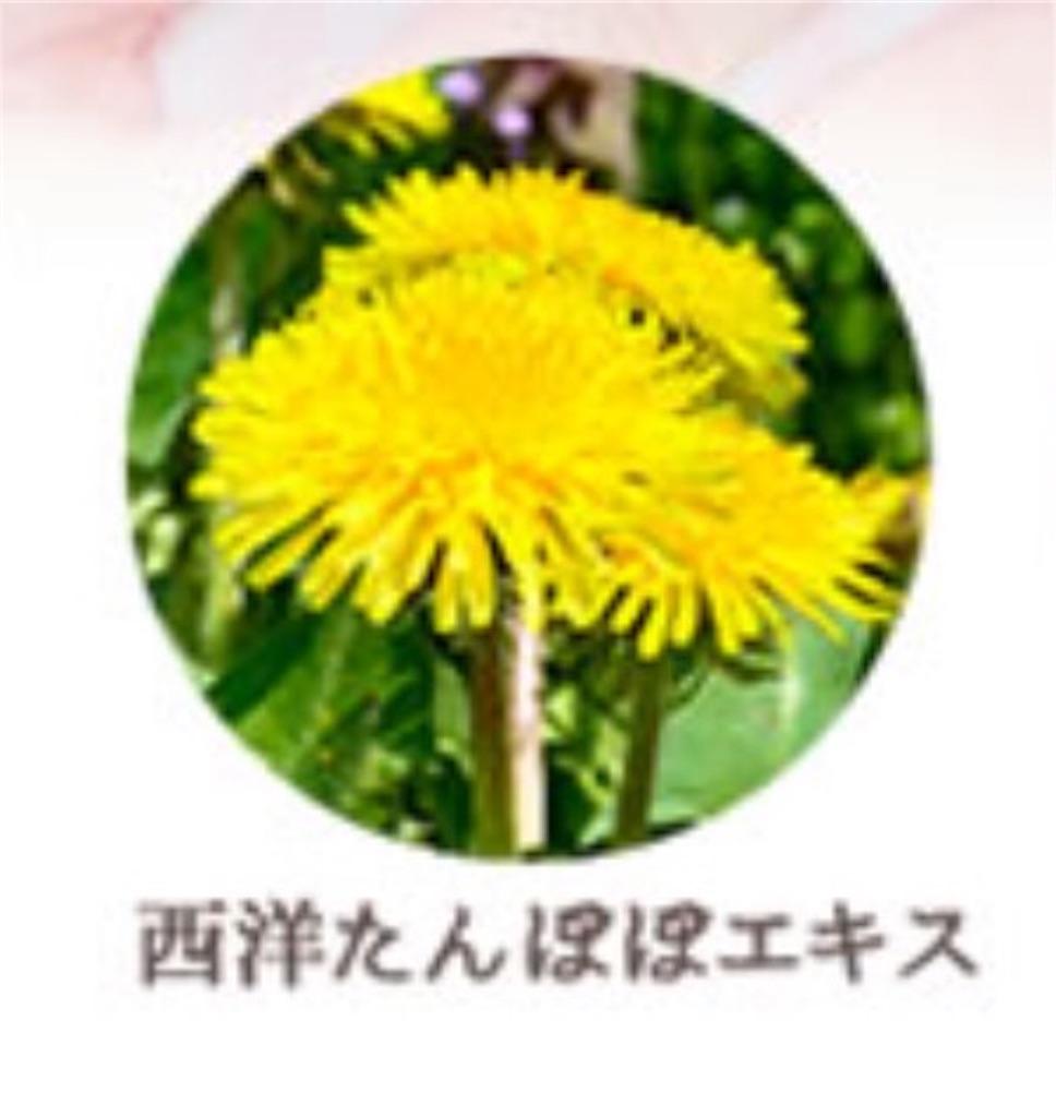 f:id:namakouso:20161231120437j:plain