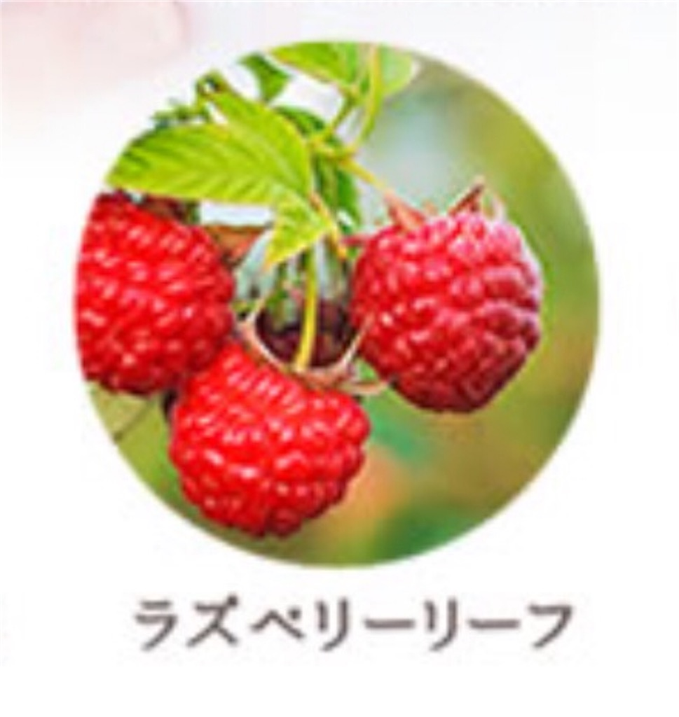 f:id:namakouso:20170101232214j:image