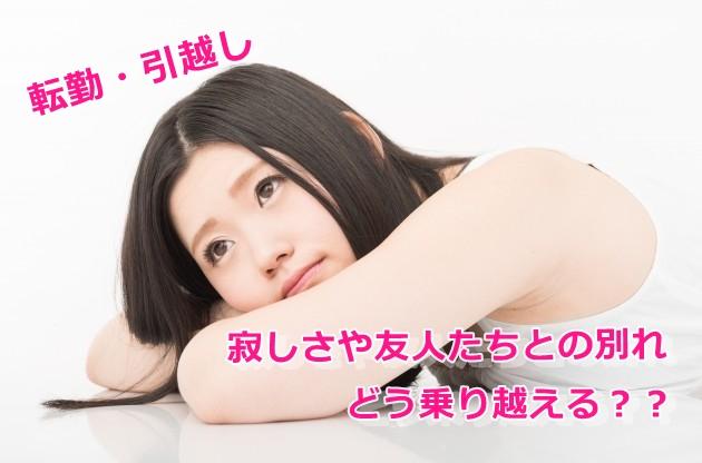 f:id:namakouso:20170127234558j:plain