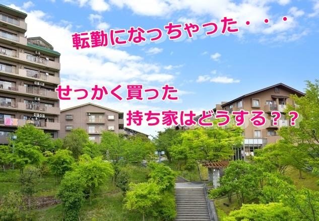 f:id:namakouso:20170216010626j:plain