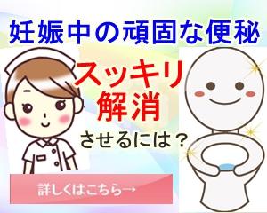 f:id:namakouso:20170430025952j:plain
