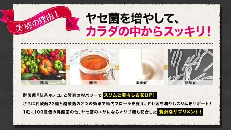 f:id:namakouso:20170509122752j:plain