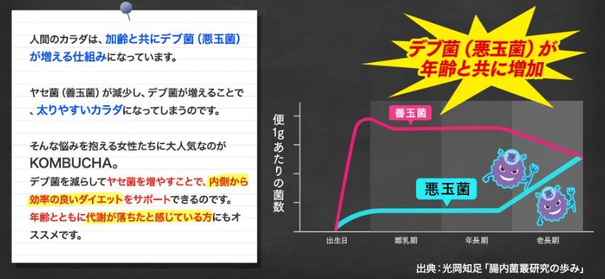 f:id:namakouso:20170510005234j:plain