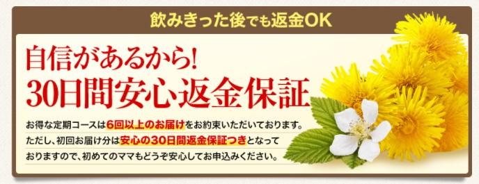f:id:namakouso:20170513200238j:plain