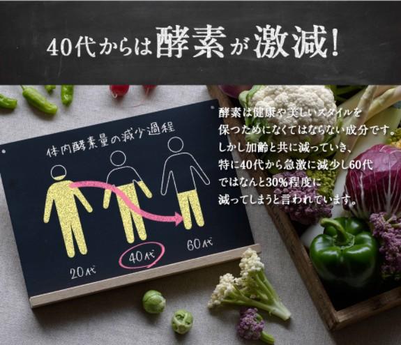 f:id:namakouso:20170620042950j:plain