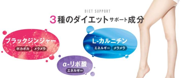 f:id:namakouso:20170721024332j:plain