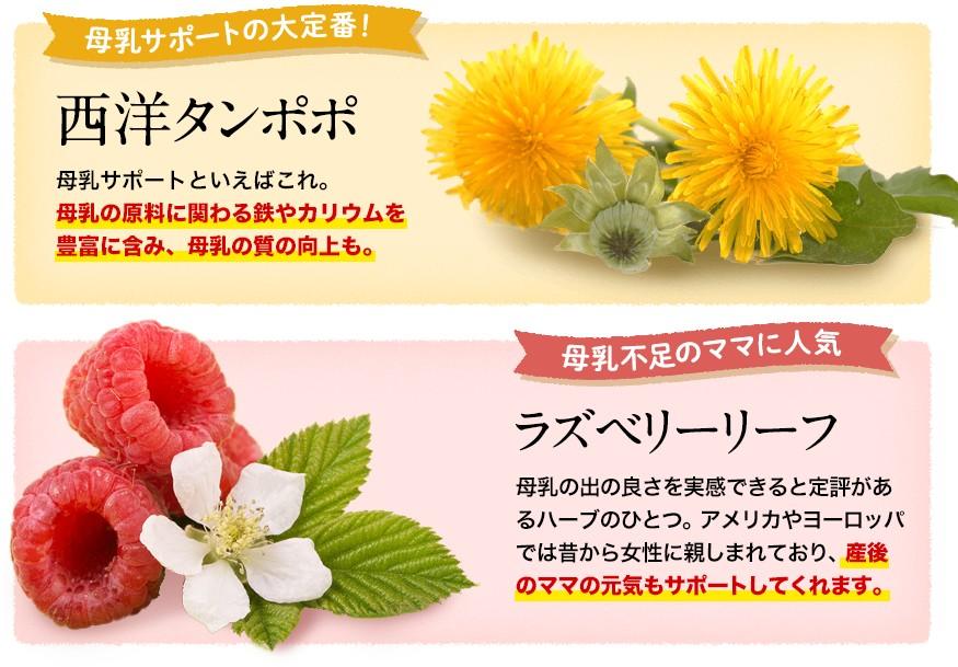 f:id:namakouso:20180130155220j:plain