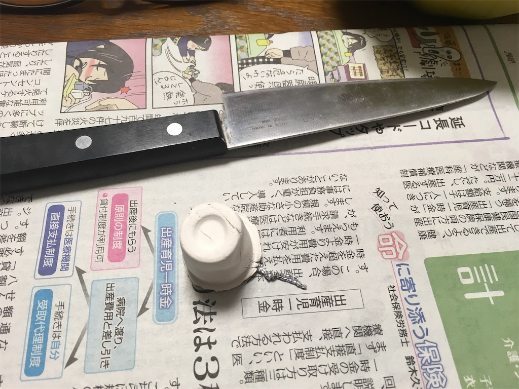 f:id:namaneko_hoken:20170302004853j:image