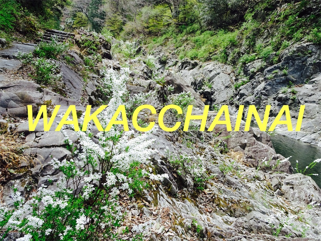 f:id:namarahyakkoi93:20170504010523j:image