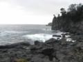 2009/02/15、城ヶ崎海岸。