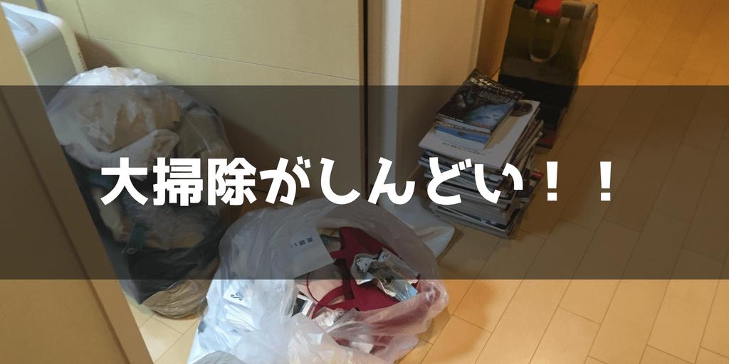 f:id:namekochanjiru:20171231191909p:plain