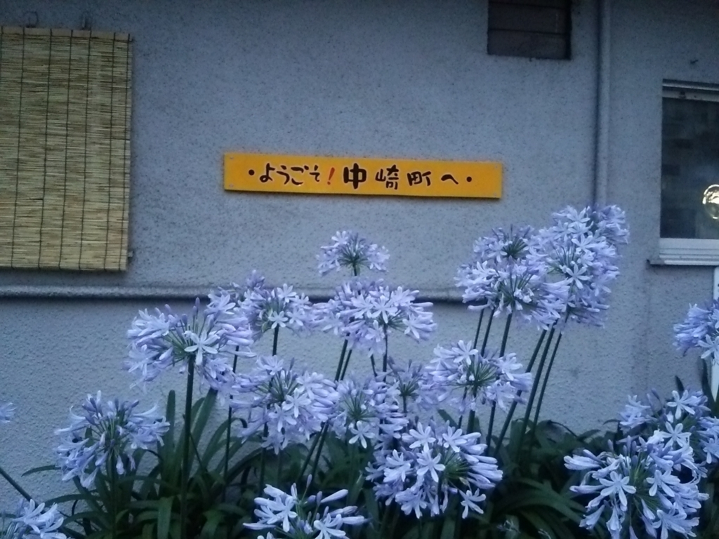 f:id:naminonamimatsu:20170701121546j:plain