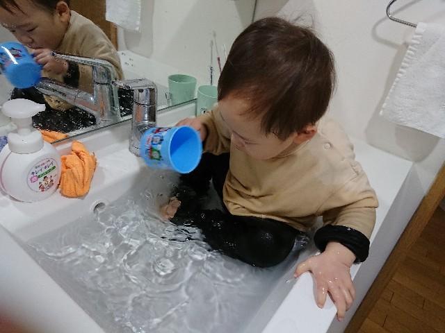 f:id:naminonamimatsu:20200224144104j:image