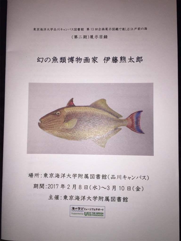 f:id:naminori_iruka:20170220223722j:image