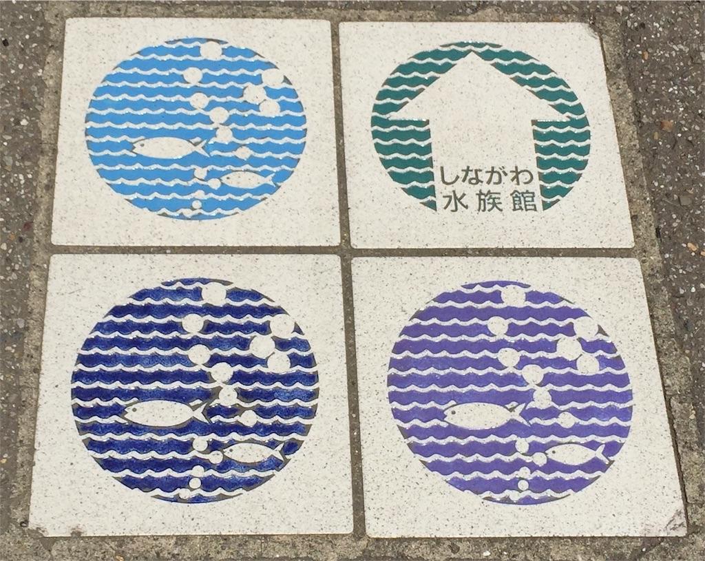 f:id:naminori_iruka:20170522225722j:image