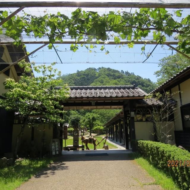 f:id:namitofuu:20210610221350j:image