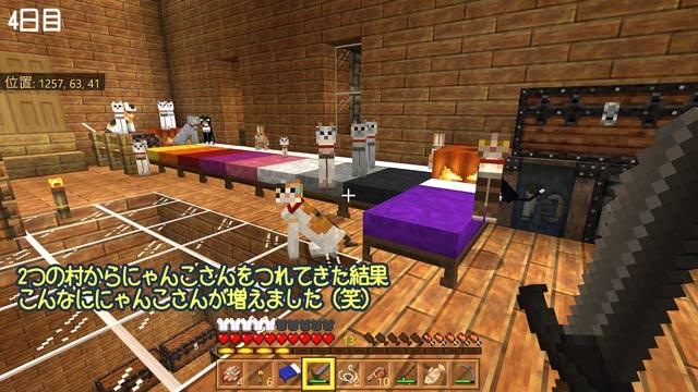 f:id:namomaru:20190218135035j:plain