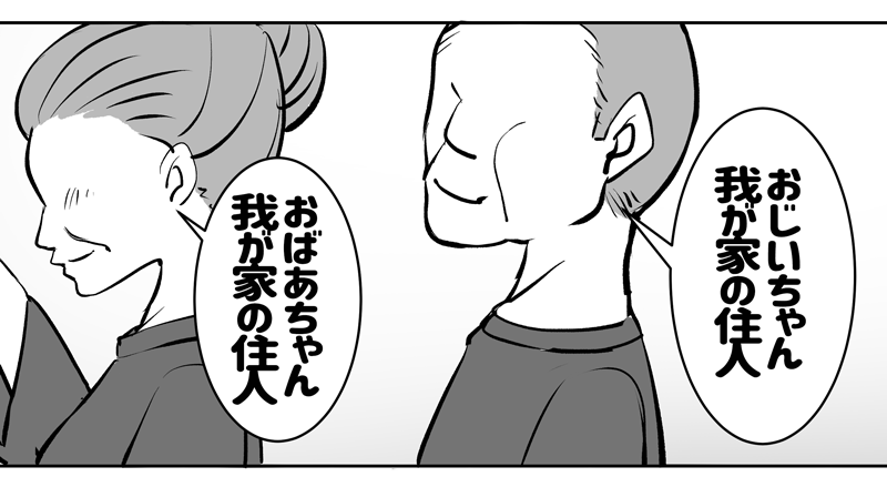 f:id:namomaru:20191213173225p:plain
