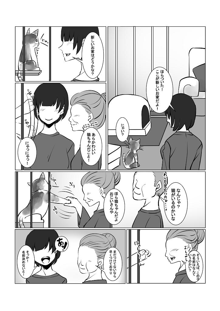 f:id:namomaru:20191213173323p:plain