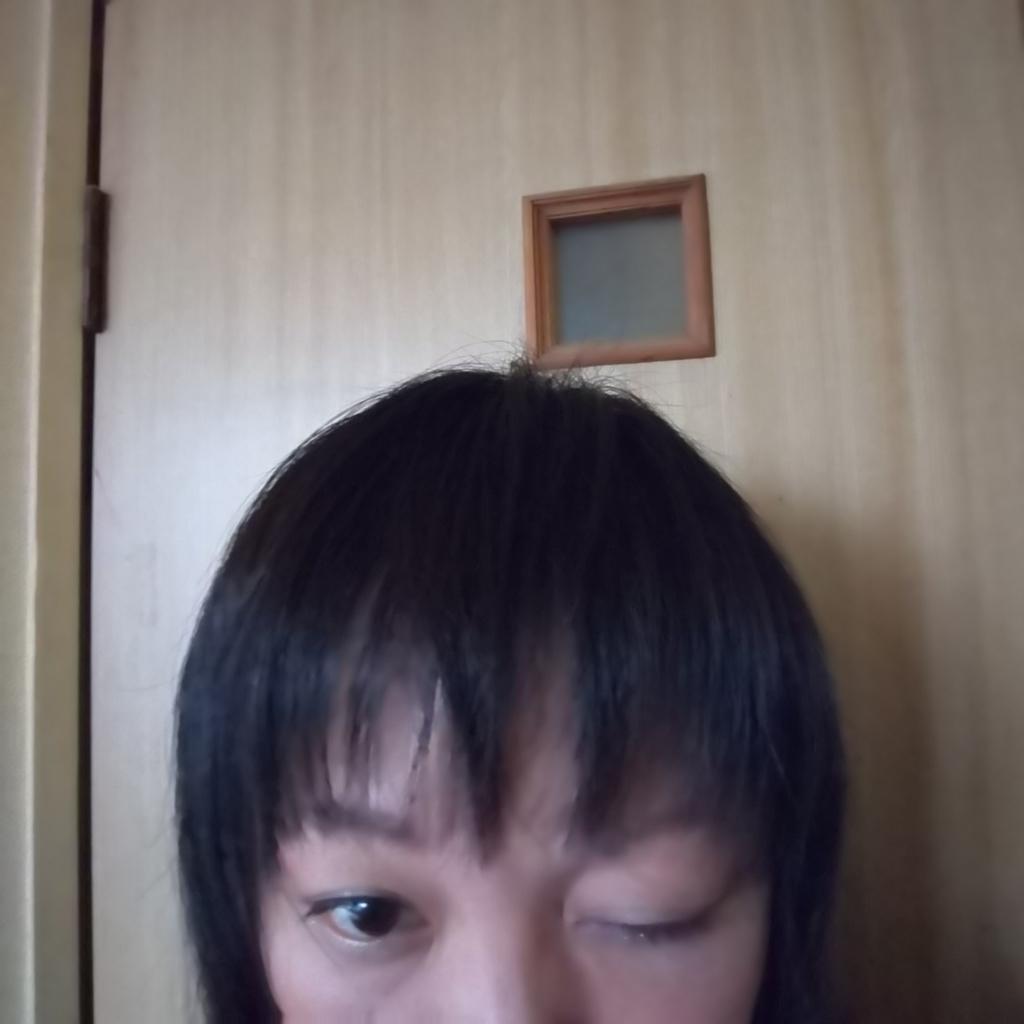 f:id:namosiranu_kusani:20181113205235j:plain