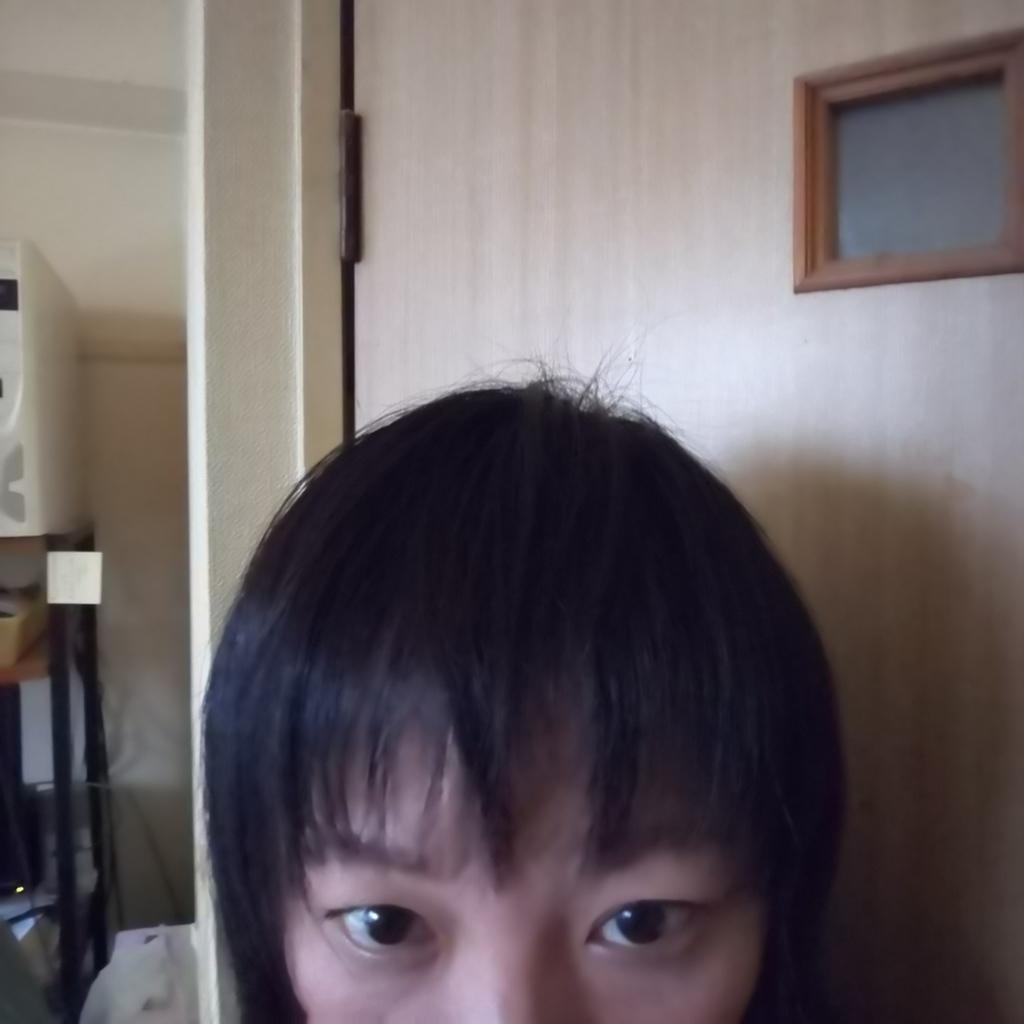 f:id:namosiranu_kusani:20181113205250j:plain