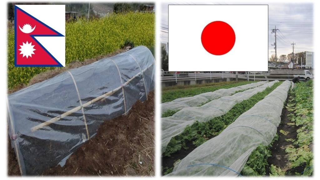 f:id:namuramura:20170619092312j:plain