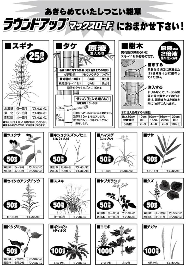 f:id:namuramura:20170619215108j:plain