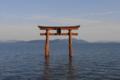京都新聞写真コンテスト 孤高に佇む