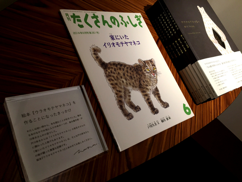f:id:nana-blog:20170724190014j:image:w360