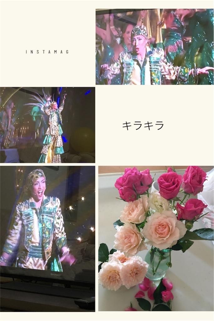 f:id:nana-kichi:20170530081605j:image