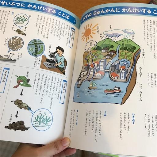 f:id:nana-y-sunao:20170826073832j:image