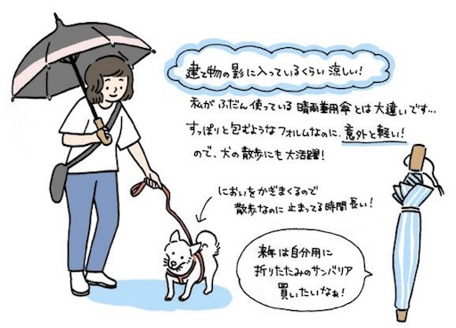 f:id:nana-y-sunao:20170826074154j:image