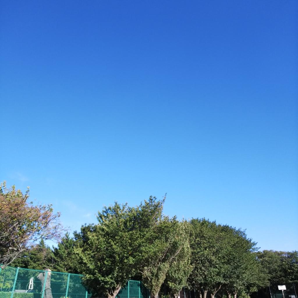 f:id:nana00maru:20180823215656j:plain