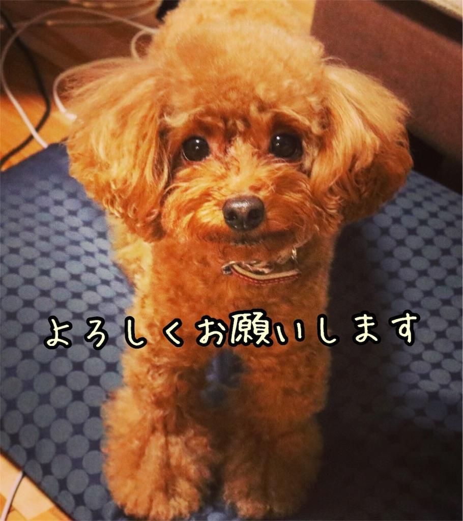 f:id:nana_p:20180114221722j:image