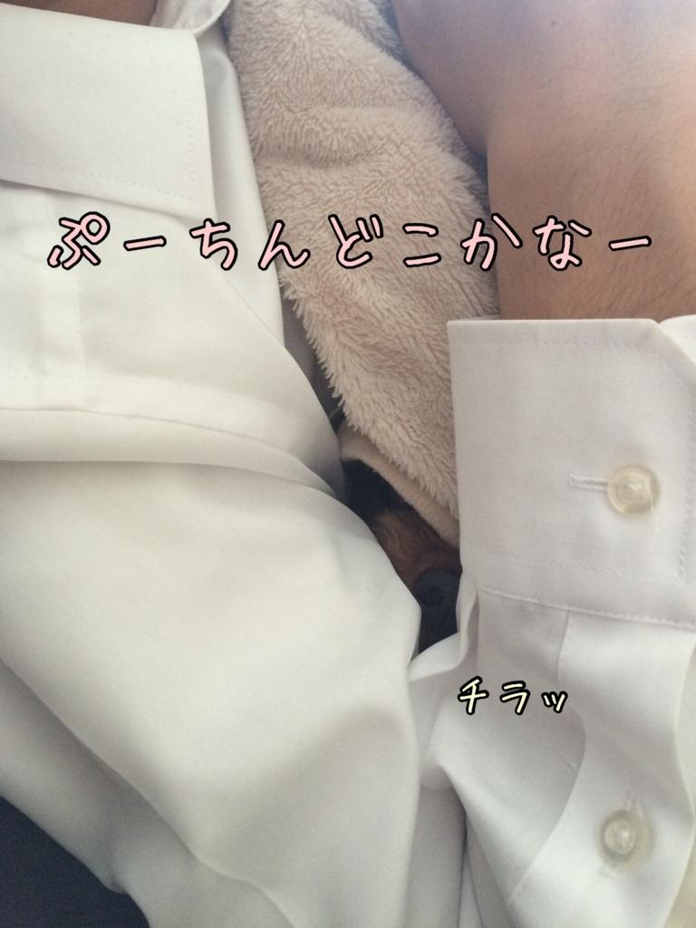 f:id:nana_p:20180117215812j:plain